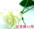 お見舞い用バラ花束通販